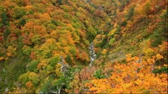 Autumn at Jyougakura Ravine, Aomori Prefecture, Japan Stock Footage