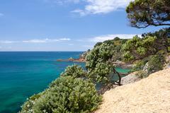 Vegetation on the Cliff Edge, Azure Sea - stock photo