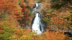 Hottai Fall and autumn leaves at Mount Chokai, Akita Prefecture, Japan Stock Footage