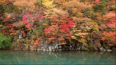 River and Autumn leaves at Mount Chokai, Akita Prefecture, Japan Stock Footage