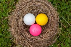 Unity in diversity - three color golf balls in one nest. - stock photo