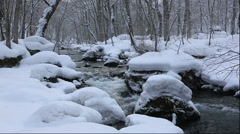 Winter in the Oirase Gorge in Aomori Prefecture Stock Footage