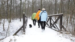Three tourist with the dog are walking on the pedestrian bridge in the winter Stock Footage