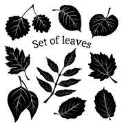Leaves of Plants Pictogram Set - stock illustration