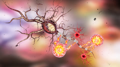 Highly detailed animation of Neuron structure - stock footage