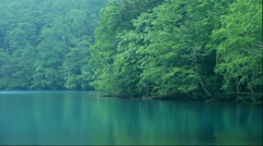Fresh green at Lake Onneto in Hokkaido Stock Footage