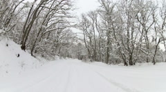 winter road through forest after snowfall, Go Pro - stock footage