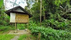 Panning Shot of a Jungle Trailhead in Southeast Asia. UltraHD video - stock footage