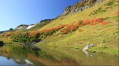 Autumn leaves at Kogen Onsen in the Daisetsuzan National Park in Hokkaido - stock footage