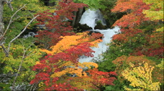 Autumn leaves and Lake Akan in Hokkaido Stock Footage
