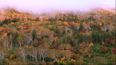 Autumn morning mist over Shiretoko pass, Hokkaido, Japan Stock Footage
