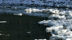 Hudson River Ice Front during the day in Brooklyn Stock Footage