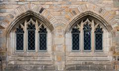 Two windows in Neo-Gothic Stock Photos