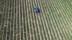 Truck in french Vineyards with drone in gironde 4.mp4 Stock Footage
