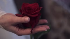 The couple holding a rose in hands as a symbol of love Stock Footage