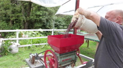Pouring Beans into Separator. - stock footage