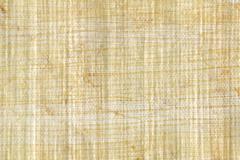 Papyrus paper - stock photo