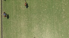 Drone scene of a Polo Match. Stock Footage