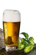 Illustration of beer and hops Stock Illustration