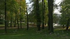 Ottoman grave stones in Veliki Park, Sarajevo - stock footage
