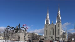 Notre Dame Basilica in Ottawa Stock Footage