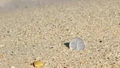 One Dirham coin quickly washed into sand, close up view Stock Footage