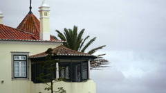 Strong winds, extreme weather, palm tree, house, Portugal Stock Footage