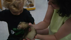 Little Boy Looking At Pets In Pet Store - stock footage