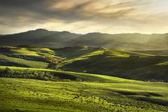 Tuscany spring, rolling hills on sunset. Rural landscape. Green fields and fa Stock Photos
