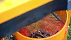 Wood chips fall in to bag top view close-up Stock Footage