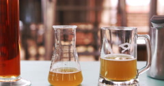 Examination of the beer Stock Footage