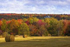 Early autumn hayfield Eastern Townships West Bolton Quebec Canada North America - stock photo