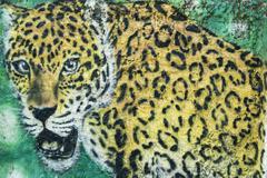 Leopard urban graffiti Parintins Amazonas state Brazil South America Stock Photos
