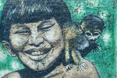 Boy with monkey urban graffiti Parintins Amazonas state Brazil South America Stock Photos