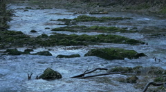 Radovna river flowing through mossy rocks in Bled Stock Footage