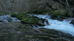 Vintgar gorge with Radovna river in Bled Stock Footage