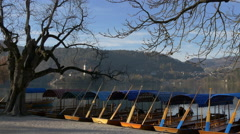 View of colorful moored pletnas on the shore of Bled lake Stock Footage