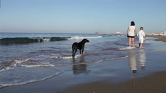 Mother an little son have a sea cost walk and black dog is there too :) - stock footage