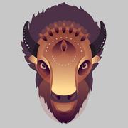 Buffalo - vector illustration Piirros