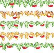 Rowanberry, seamless Stock Illustration