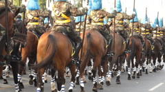 Mounted soldiers in a parade - stock footage