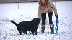 Dog catching blue ball in snow Stock Footage