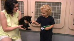 Little Boy Looking At Pets In Pet Store Stock Footage