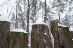 Snow-covered old rural wooden fence in winter time Stock Photos