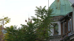 Trees in front of a building with a dome in Sarajevo - stock footage