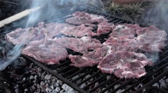 Meat on a grill, set to cold  Stock Footage