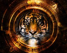 Ancient Mayan Calendar and Tiger head, abstract color Background, computer - stock illustration