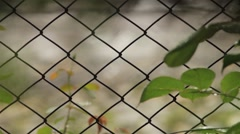Spring rain seen through a mesh fence with Sharf change on paved yard behind 35 Stock Footage
