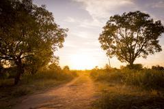 Road In Botswana Stock Photos