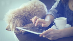 Young women is resting with a dog at home and using tablet . Stock Footage